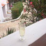 Cava on the balcony