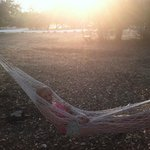 right outside the cabin. we brought the hammock