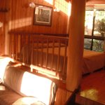 Foto de Milkwood Lodge Rainforest Retreat