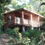 Zdjęcie Milkwood Lodge Rainforest Retreat