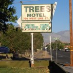 Foto de The Trees Motel