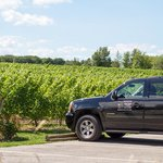 Wine Tours Toronto - Private Tours
