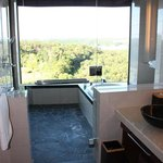 Bath room with a view