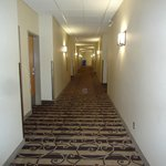 Foto di BEST WESTERN PLUS Pembina Inn & Suites