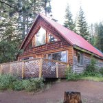 Eagle cabin - $250 night + tax!