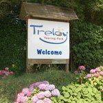 Welcome to Treloy!