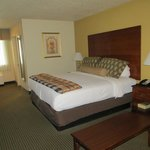 BEST WESTERN PLUS Milwaukee Airport Hotel & Conference Ctr.照片