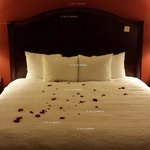 Hampton Inn Houston/Humble-Airport Area resmi