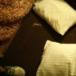Ripped up carpet and dirty pillows