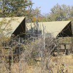 صورة فوتوغرافية لـ ‪Wilderness Adventures Banoka Bush Camp‬