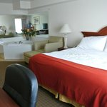 Holiday Inn Express Hotel & Suites Marion resmi