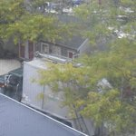 7: am garbage pickup right outside window above bar