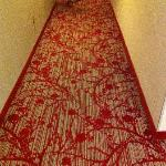 nice hall way carpet
