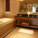 Jacuzzi tub, extra large shower