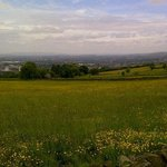 Summer at Werneth Low