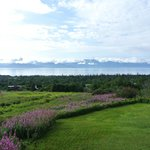 A view of the front yard, Kachemak bay and beyond to three different glaciers.