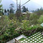 The Manali Lodge의 사진