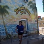 Hollywood Beach Hotels - Swanの写真