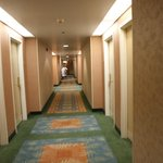 Bilde fra Comfort Inn & Suites Boston Logan International Airport