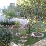 Photo of Villa Vittoria B&B
