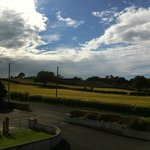 View from my room. Yes, the sky is sunny in N.Ireland!