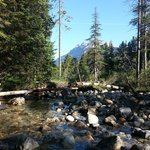 Foto de HI-Mosquito Creek Wilderness Hostel