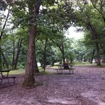 Foto van White Oak Campground