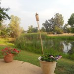 Lavender Dreams Bed and Breakfast Cottage의 사진