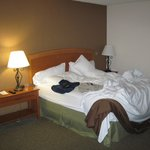 Φωτογραφία: Holiday Inn Coralville