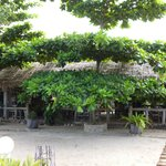 bungalows reception/resto