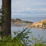 Φωτογραφία: Hammond Bay Oceanside Bed & Breakfast