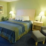 Foto de BEST WESTERN Albany Mall Inn & Suites