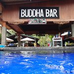 Nice bar which you can swim up to