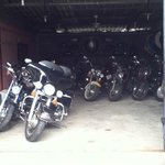 Some of Nicky's Harley's.