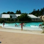 enjoying the wave pool