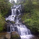 Nyange Adventures Ltd. - Private Day Tours