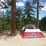 Bilde fra North Campground