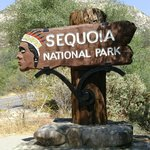 sequoia sign