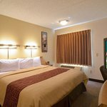 Φωτογραφία: Red Roof Inn Detroit Rochester Hills