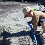 The kids loved digging and exploring.  We brought our own sand toys.
