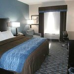 Photo de Comfort Inn Lees Summit