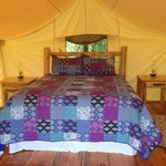Tent's bed - Glamping @ Oakwood Escape