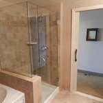 Shower stall and jacuzzi tub