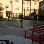 tennis/basket ball court