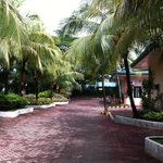 The nicely kept walkway around the hotel grounds