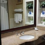 Φωτογραφία: Holiday Inn Express Houston East