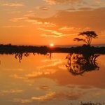 Sunrise over the lake at Kicheche Laikipia