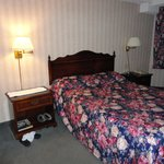 Travelodge Niagara Falls Bonaventure照片