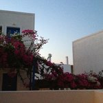 View from our little balcony, love the bougainvilleas