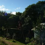 Acorn Yurt - in the sun